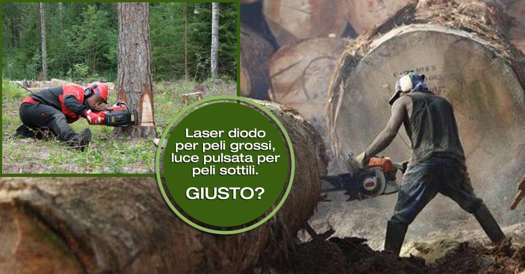 Laser diodo per peli grossi, luce pulsata per peli sottili, GIUSTO?